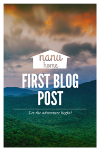 """Forest scene with words """"First Blog Post"""""""